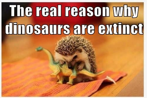 dinosaur,true story,extinct,hedghehog