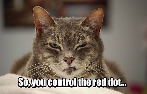 red dot captions Cats funny - 8423188480