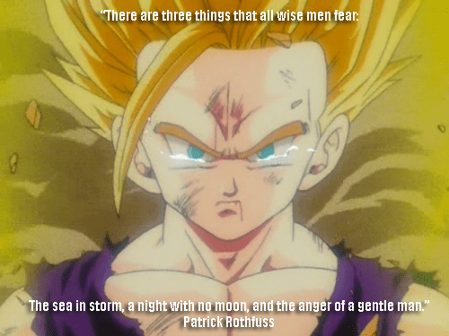 quotes,anime,Dragon Ball Z,patrick rothfuss