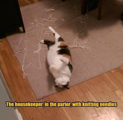 murder knitting Cats clue - 8423488768