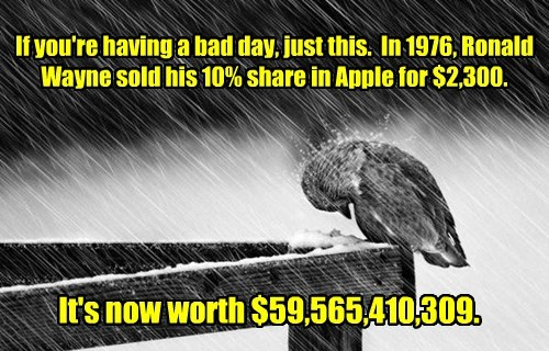 sucks birds bad day - 8424012288