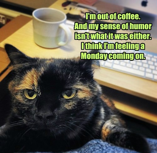 I'm out of coffee. And my sense of humor isn't what it was either. I think I'm feeling a Monday coming on.