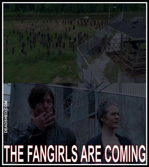 daryl dixon fangirls The Walking Dead - 8424549632