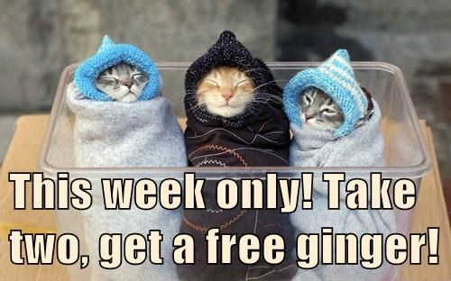 This week only! Take two, get a free ginger!