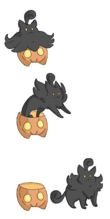 Cats mind blown Pokémon pumpkaboo - 8424762624