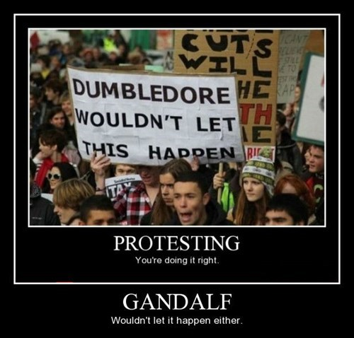 funny gandalf sign protesting