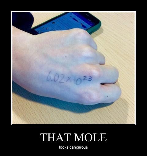 mole puns math funny