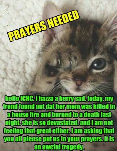 hello ICHC. I hazza a berry sad. today. my frend found out dat her mom was killed in a house fire and burned to a death last night. she is so devastated. and I am not feeling that great either. I am asking that you all please put us in your prayers. it is