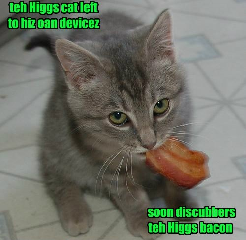higgs boson science Cats bacon - 8426653440