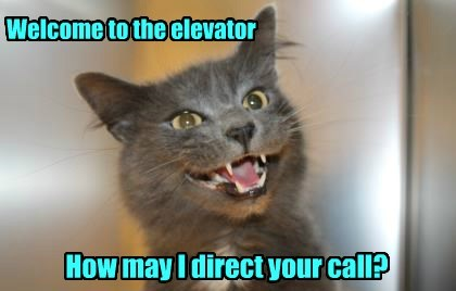 direct cat elevator how call welcome caption - 8427053056