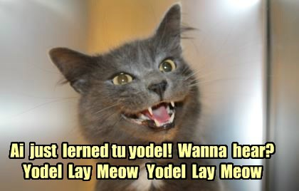 learned cat yodel meow caption - 8427102976