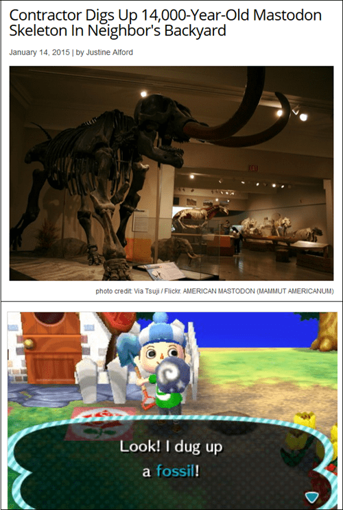 animal crossing,fossils,Mastodon