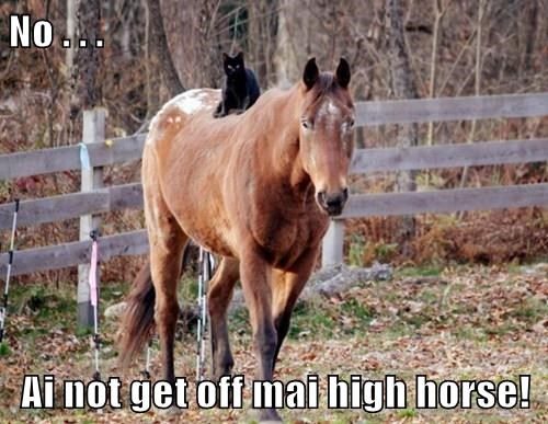 No . . . Ai not get off mai high horse!