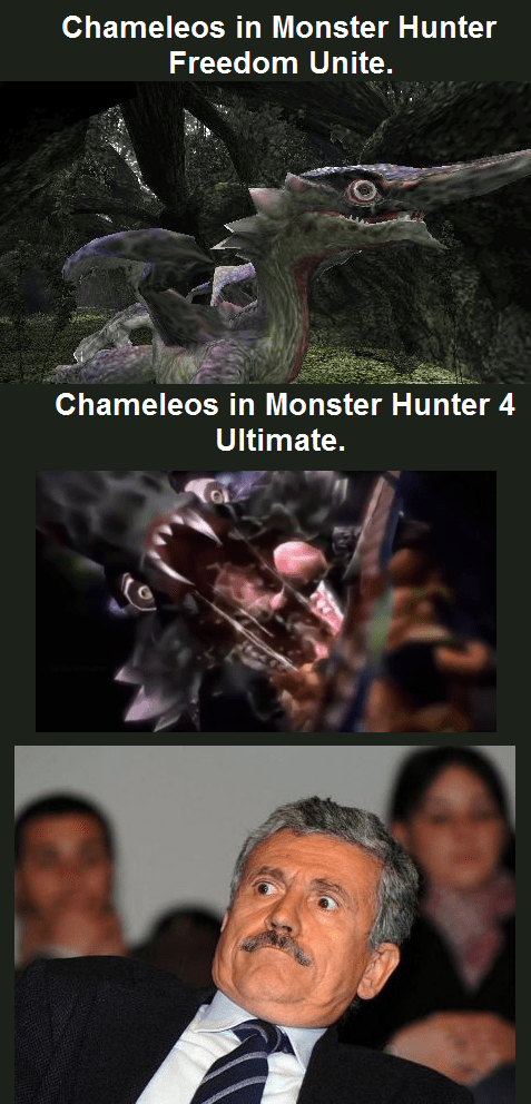 monster hunter,chameleos,monster hunter 4,nightmare fuel