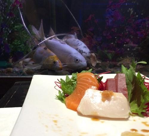 sushi fish - 8427454976