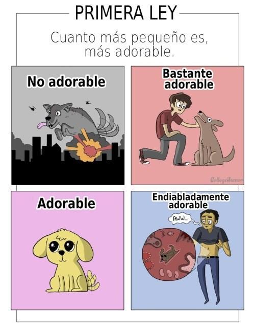 bromas viñetas curiosidades - 8428155648