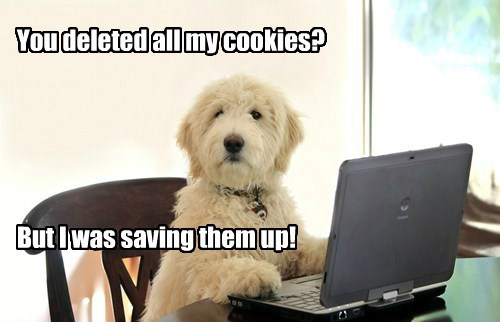 dogs why i have no idea what im doing cookies
