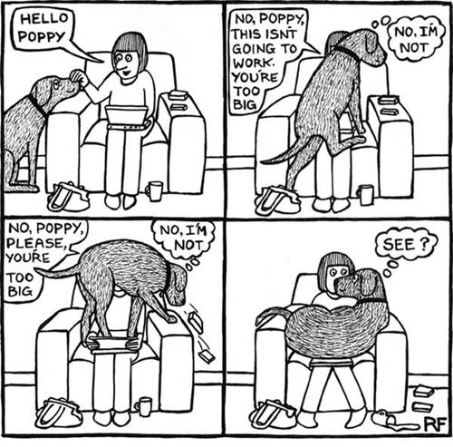 dogs seats web comics
