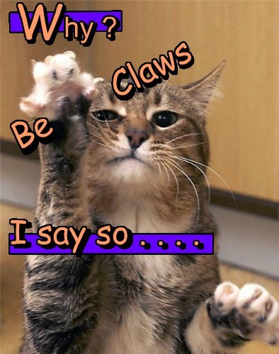 hy ? Be Claws I say so . . . . hy ? gggggg W W Be Claws I say so . . . . ggggggggggg n n n n n n