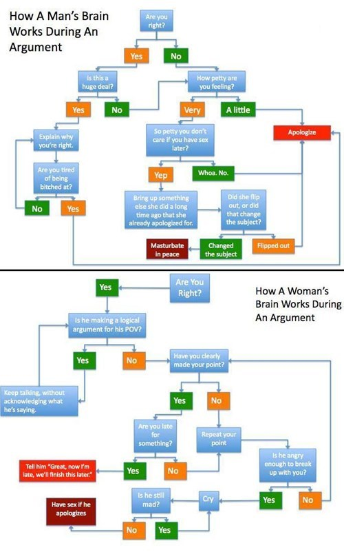 the differences between men and women during an argument