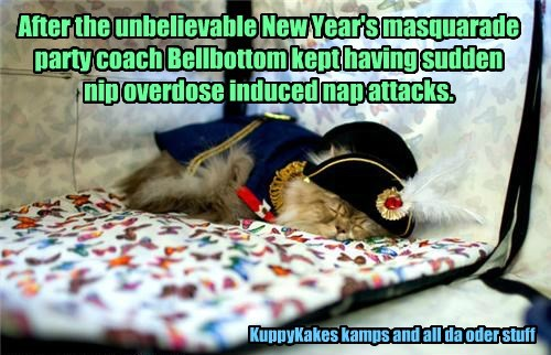 After the unbelievable New Year's masquarade party coach Bellbottom kept having sudden nip overdose induced nap attacks. KuppyKakes kamps and all da oder stuff