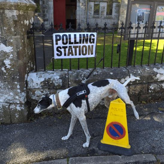 britain voting twitter vote - 843013
