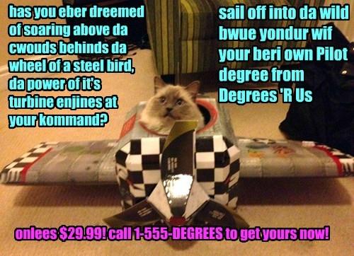 Cheezburger Image 8430336768