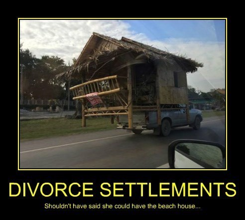 divorce funny beach house - 8430489856