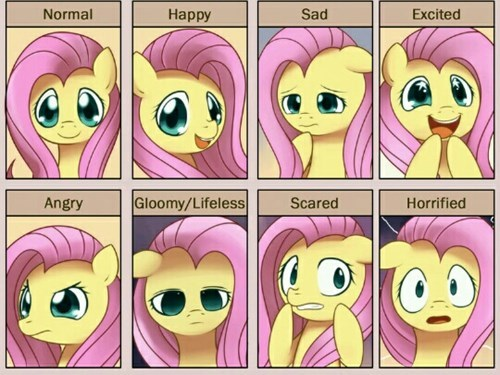 feelings,fluttershy,faces