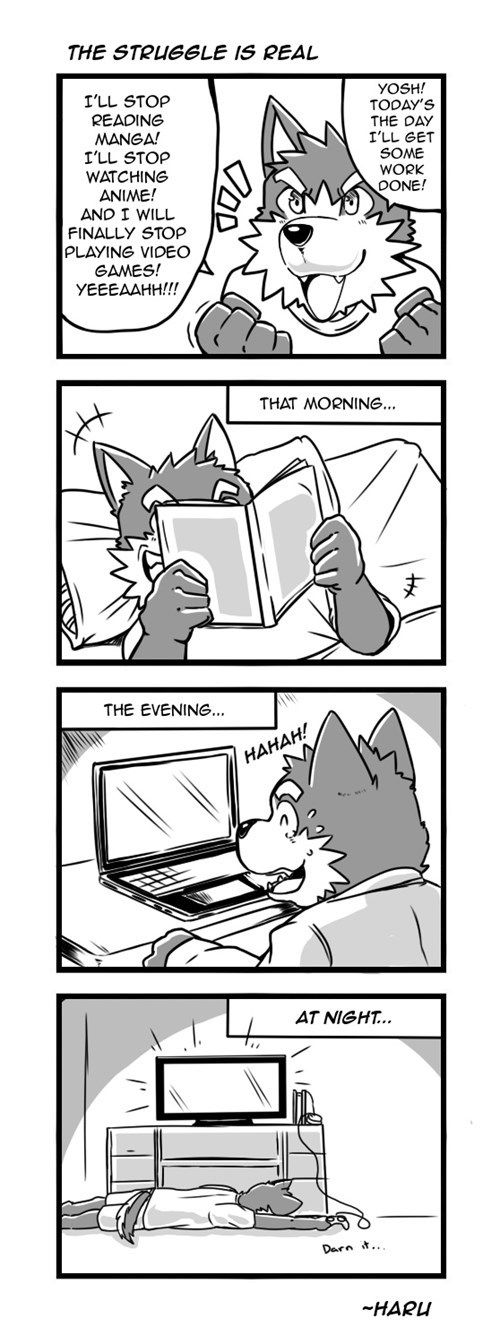 anime,furries,web comics