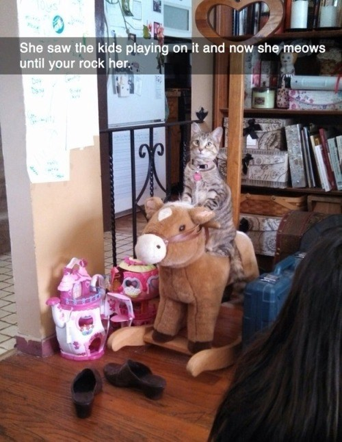 rocking horse meow Cats - 8430862336