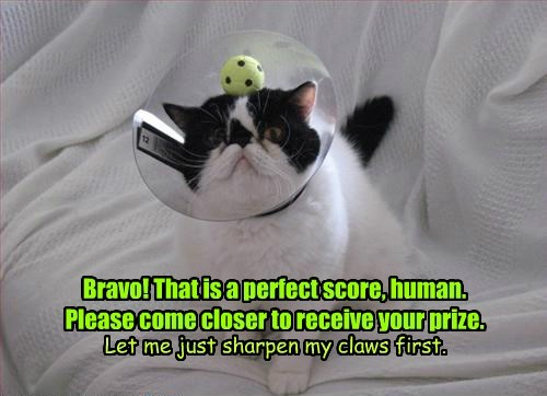 Bravo! That is a perfect score, human. Please come closer to receive your prize. Let me just sharpen my claws first.