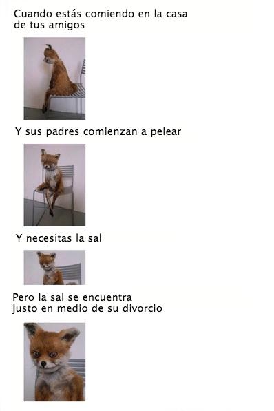 bromas Memes curiosidades - 8431138048