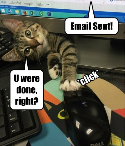 email sent youre welcome Cats - 8431684864