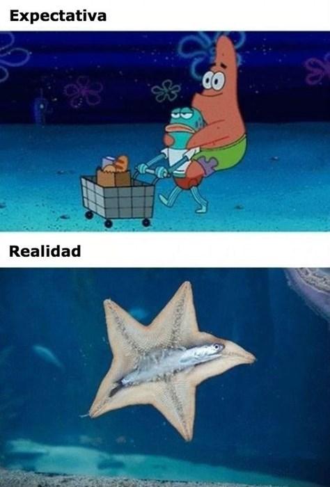 bromas Memes - 8431812864