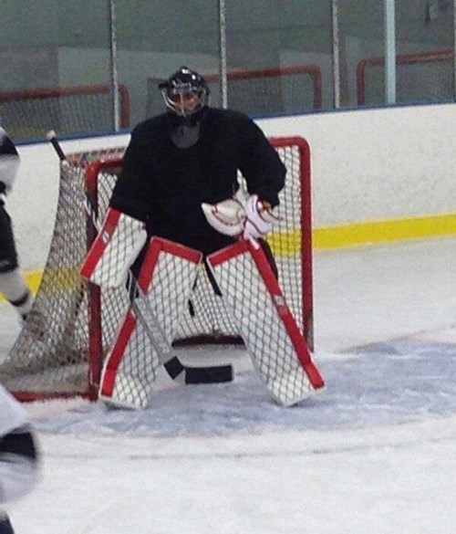 hockey NHL goalies - 8431861760