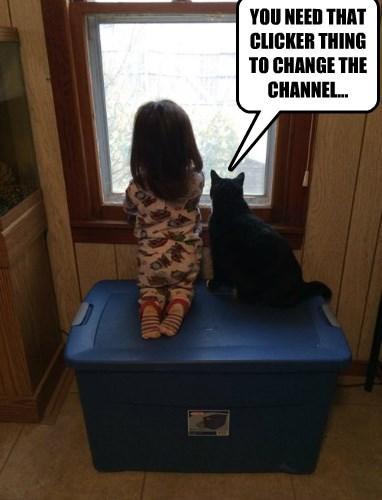 Cats kids TV - 8432261120