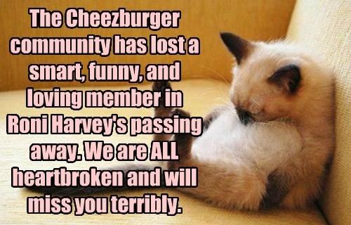 Cheezburger Image 8432492800