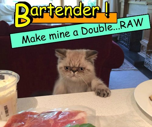 double bad day bartender Cats - 8432643840