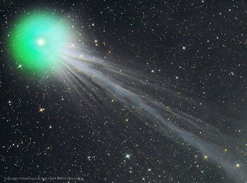 comet lovejoy has a complex tail