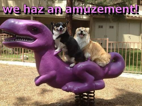 animals grin dogs dinosaur amusement