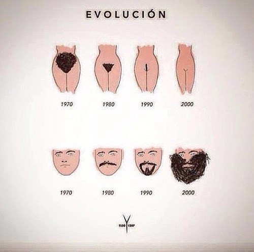 the inverse evolution of pubes and facial hair