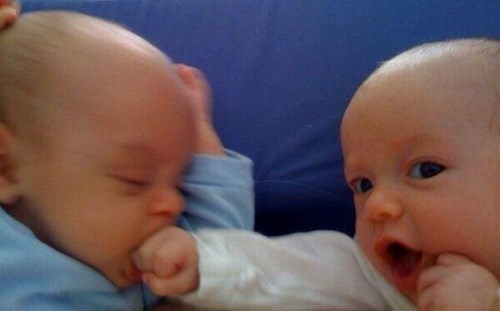 baby,sibling rivalry,parenting