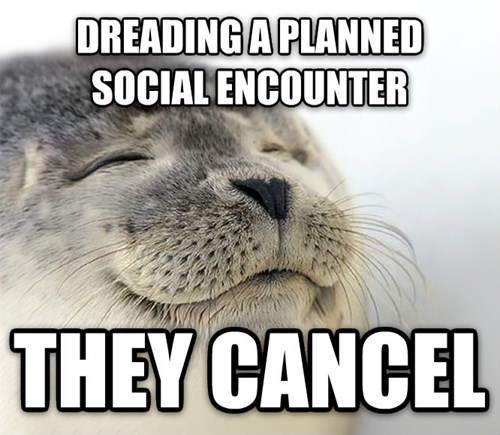 Seal - DREADING A PLANNED SOCIAL ENCOUNTER THEY CANCEL
