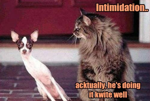 Intimidation.. acktually, he's doing it kwite well