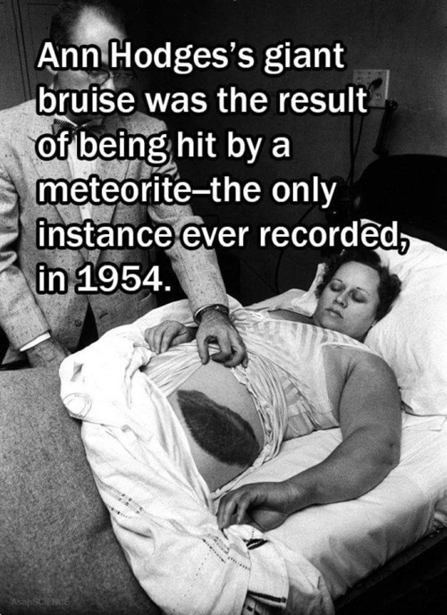 Meteorite hits ann hodges