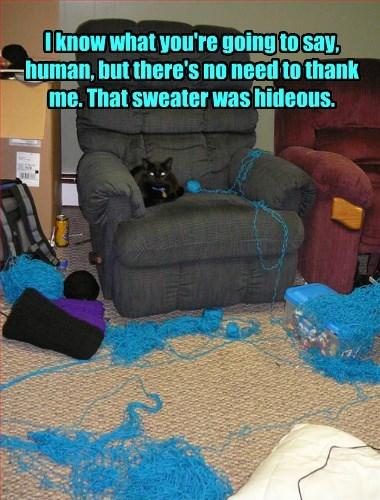 captions Cats funny - 8435510528