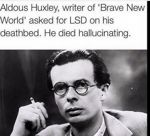 aldous huxley takes LSD on his death bed