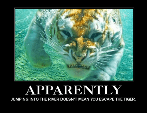 funny jet packs river tigers swimming - 8435881216