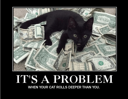 Cats,money,funny,problem